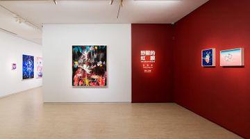 Contemporary art exhibition, Wang Liang-Yin, The Iris of Beasts at Lin & Lin Gallery, Taipei
