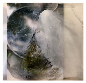 Worlds The Disappear III by Janet Laurence contemporary artwork