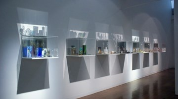Contemporary art exhibition, Janet Laurence, What colour is the sacred? at Arc One Gallery, Melbourne