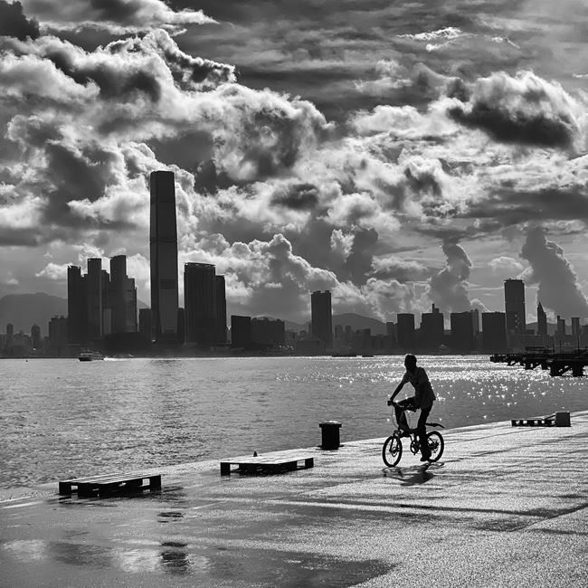 Morning Cycle by Stephen King contemporary artwork