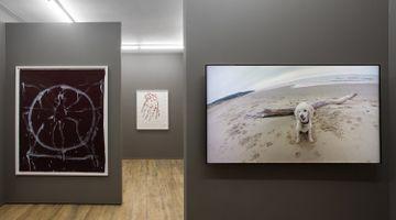 Contemporary art exhibition, Joan Jonas, Fawn Grove at Amanda Wilkinson Gallery, London, United Kingdom