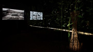 Contemporary art exhibition, Choi Jae-Eun: Demilitarized Zone (DMZ) Project –夢의 庭園 / Dreaming of Earth at 15th International Architecture Exhibition, La Biennale di Venezia, Seoul