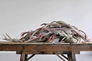 Actaeon (Beijing) IV, 2012 by Berlinde De Bruyckere contemporary artwork