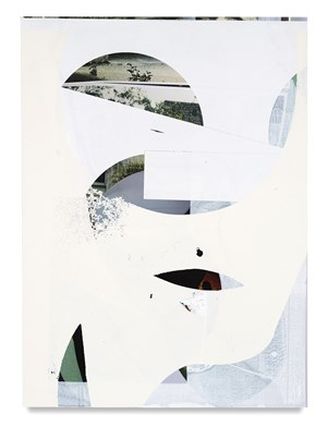 Untitled Composite by Kevin Appel contemporary artwork