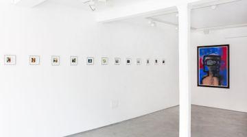 Contemporary art exhibition, Sidney Nolan, Polaroids at Informality, Henley on Thames