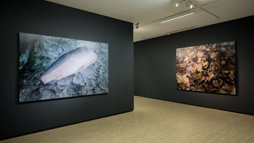 Exhibition view: Huang Chia-Ning, Facts・Realities・Truth 攖真・滢真・應真, Lin & Lin Gallery, Taipei (14 March–18 April 2020). Courtesy Lin & Lin Gallery.