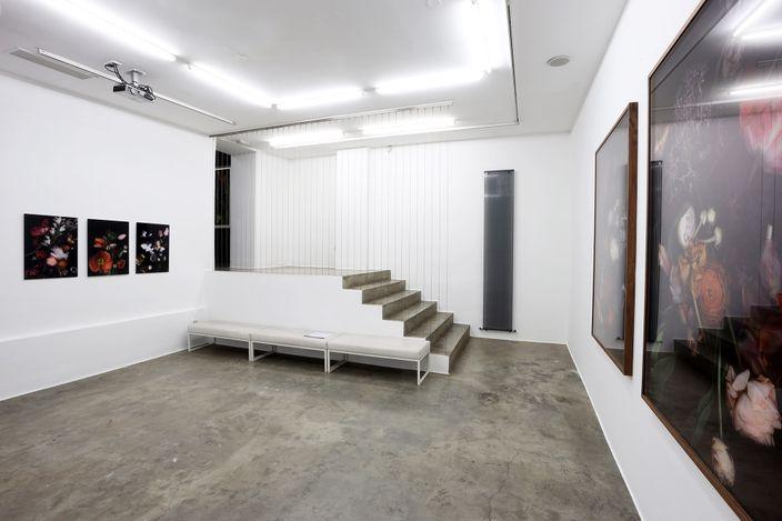 Exhibition view: Luzia Simons, Stockage and Jardim,Galerija Fotografija, Ljubljana (17 June–31 August 2021). CourtesyGalerija Fotografija.