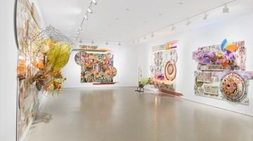 Contemporary art exhibition, Judy Pfaff, Judy Pfaff at Miles McEnery Gallery, 520 West 21st Street, New York, USA