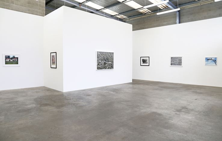 Exhibition view: Peter Peryer, Peter Peryer 2017, Jonathan Smart Gallery, Christchurch (26 April–20 May 2017). Courtesy Jonathan Smart Gallery.