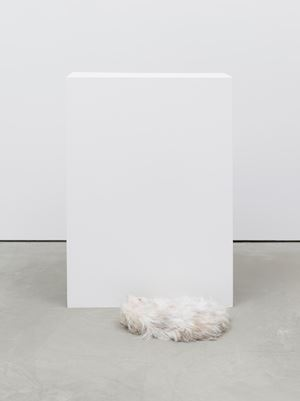 Memetic absence, or The squatters (Caesar meet Wentworth's Man and the Animals #2 (1991)) by Ryan Gander contemporary artwork
