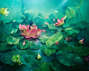 Resurrection by JeeYoung Lee contemporary artwork