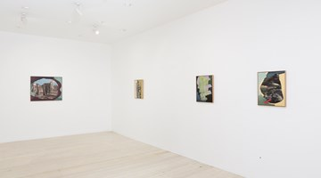Contemporary art exhibition, Alice Wormald, Partly Altered Aperture at Gallery 9, Sydney