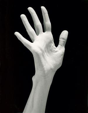 Lucinda's Hand by Robert Mapplethorpe contemporary artwork