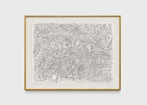Desenho organizado como um organismo by Milton Machado contemporary artwork