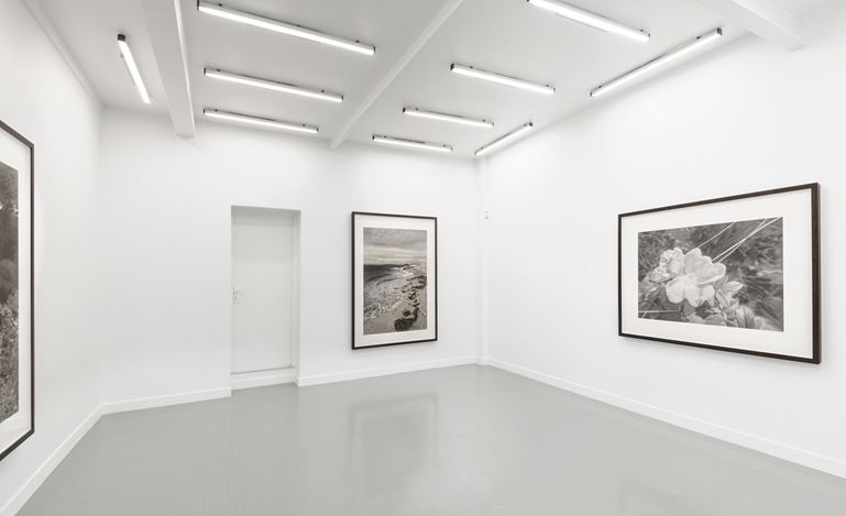 Exhibition view:Gunnel Wåhlstrand, Gunnel Wåhlstrand,Andréhn-Schiptjenko, Paris(12 September–31 October 2020). CourtesyAndréhn-Schiptjenko, Paris. Photo: © C. Maignien.