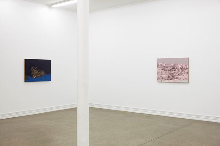 Exhibition view: Whitney Bedford, Bohemia, Starkwhite (31 July–24 August 2018). Courtesy Starkwhite.