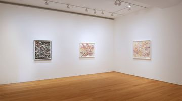 Contemporary art exhibition, Mark Grotjahn, Horizontals at Gagosian, Hong Kong