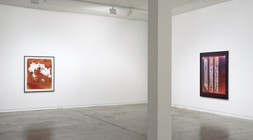 Contemporary art exhibition, Justine Varga, Memoire at Two Rooms, Auckland