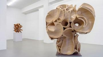 Contemporary art exhibition, Tony Cragg, Tony Cragg at Buchmann Galerie, Buchmann Galerie, Berlin