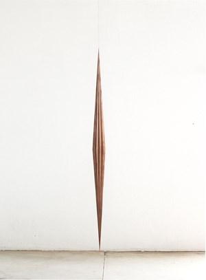Mixirica by Artur Lescher contemporary artwork