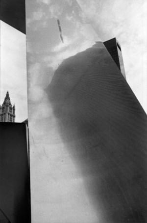 Utopia WTC by Fernando Zaccaria contemporary artwork