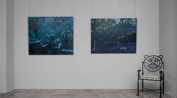 Contemporary art exhibition, Tamaris Borrelly, Bruno Gadenne, A Midsummer Night's Dream at Galerie Dumonteil, Shanghai