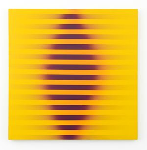 Untitled (#14) by Roy Colmer contemporary artwork