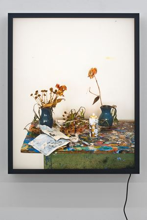 Dead Flowers in My Studio 3 by Rodney Graham contemporary artwork