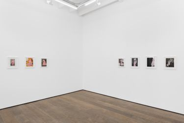 Exhibition view: Betty Tompkins, Woman Words, rodolphe janssen, Brussels (9 September–16 October 2021).Courtesy the artist and rodolphe janssen, Brussels. Photo HV photography.