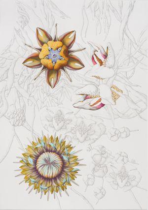 Perpetuum florens (I) by Miron Schmückle contemporary artwork