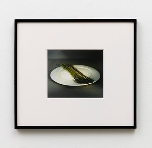 Asparagus 7 a.m. by Calvin Marcus contemporary artwork