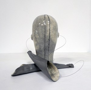 Headcase 17 by Julia Morison contemporary artwork