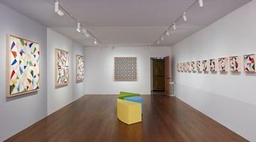 Contemporary art exhibition, Eduardo Terrazas, Cosmos within a cosmos at Timothy Taylor, New York