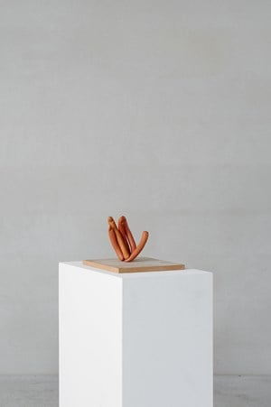 Hand (Abstract Sculptures) by Erwin Wurm contemporary artwork