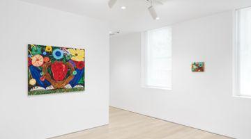 Contemporary art exhibition, Daniel Gibson, Ocotillo Song at Almine Rech, New York, USA