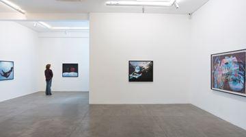 Contemporary art exhibition, Janaina Tschäpe, Pássaro que me engoliu at Fortes D'Aloia & Gabriel, São Paulo, Brazil