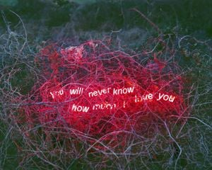 You Will Never Know How Much I Love You, From the Series 'Aporia' by Jung Lee contemporary artwork