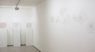 Contemporary art exhibition, Peter Trevelyan, Differentiate at Bartley & Company Art, Wellington