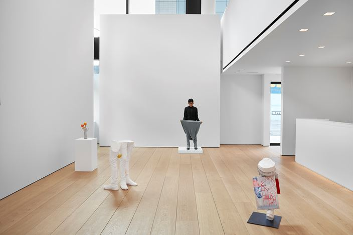 Exhibition view: Erwin Wurm, Yes Biological, Lehmann Maupin, 501 W 24th Street, New York (16 January–22 February 2020). Courtesy the artist and Lehmann Maupin, New York, Hong Kong, and Seoul. Photo: Matthew Herrmann.