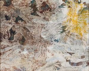 Field painting 6 - Mallee beetles by John Wolseley contemporary artwork