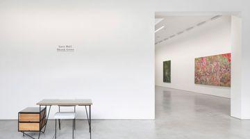 Contemporary art exhibition, Lucy Bull, Skunk Grove at David Kordansky Gallery, Los Angeles