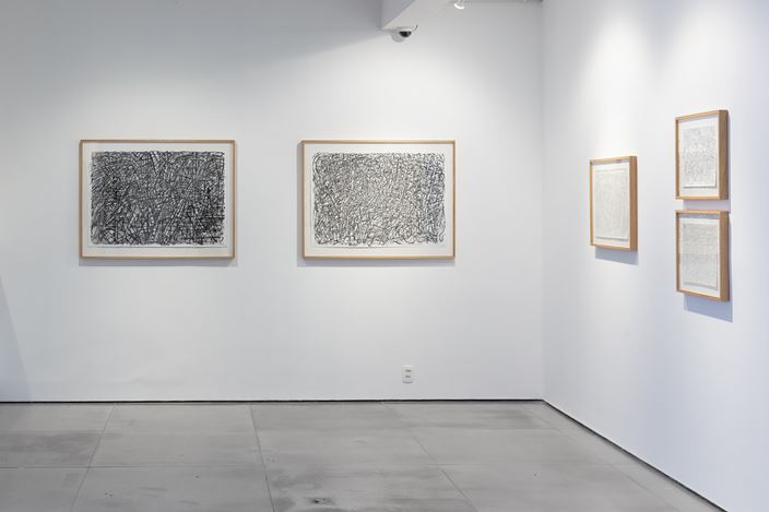 Exhibition view: Milton Machado, Arte não. Desenho., Galeria Nara Roesler, Rio de Janeiro (2 February–20 March 2021). Courtesy Galeria Nara Roesler. Photo:© Pat Kilgore.
