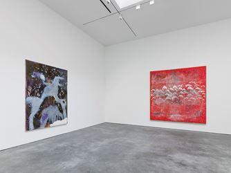Exhibition view: Sigmar Polke, Eine Winterreise, David Zwirner, 20th Street, New York (7 May–22 July 2016). Courtesy David Zwirner, 20thStreet, New York.