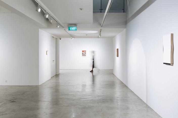 Exhibition view: Genevieve Chua, Twofold, STPI, Singapore (22 February–19 April 2020). Courtesy STPI.