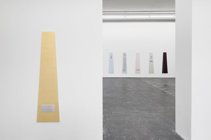 Exhibition view: Marieta Chirulescu,Galeria Plan B, Berlin (14 November 2020–6 February 2021). Courtesy Galeria Plan B.