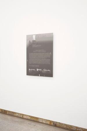 Multispec Double 1 by Orson Heidrich contemporary artwork