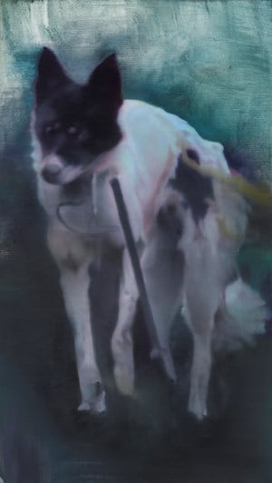 Untitled (dog second version) by Johannes Kahrs contemporary artwork