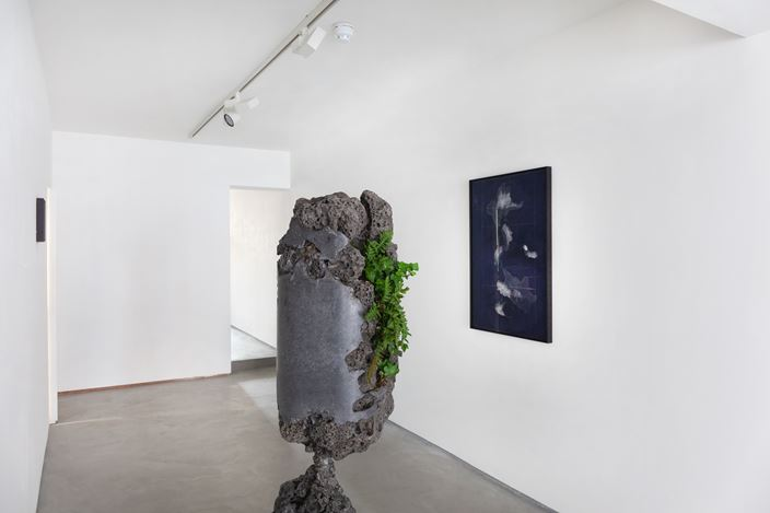 Exhibition view: Group Exhibition, From Nature, Informality (18 February–18 April 2021). Courtesy Informality.