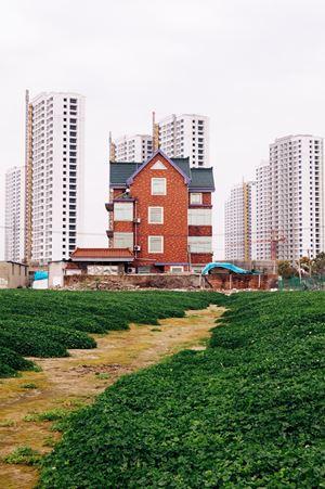 Hangzhou House No.44 by Li Qing contemporary artwork