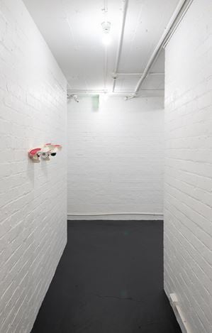 Exhibition view: Zac Langdon-Pole, Interbeing, Michael Lett, Auckland (29 January–29 February 2020). Courtesy Michael Lett.